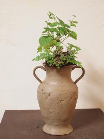 Earth vase Violet
